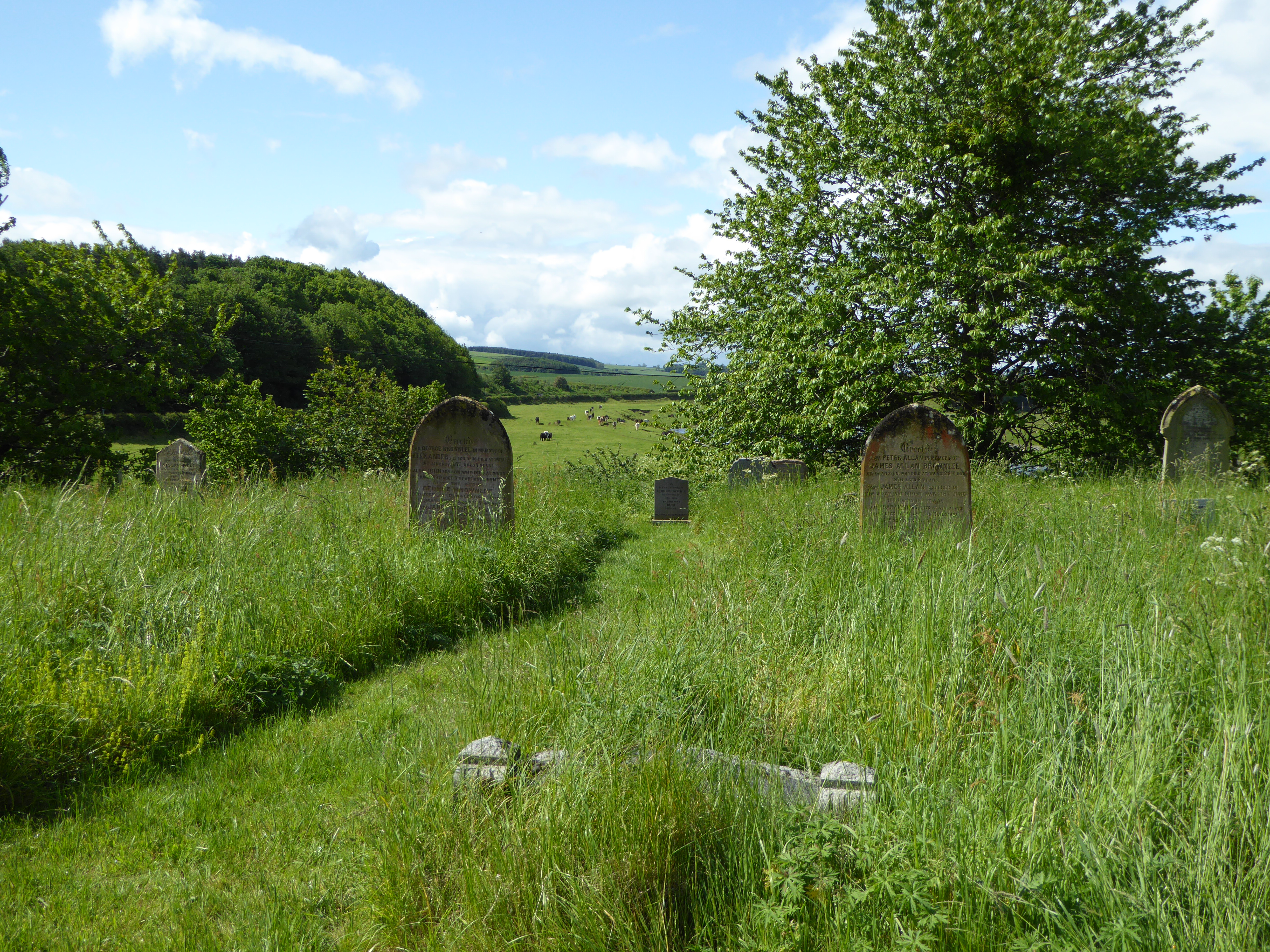 The graveyard at the Church of St Cuthbert looks out over pasture land and the River Tweed